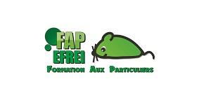 FAP Efrei