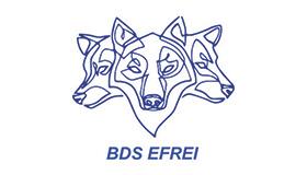 Logo_BDS1